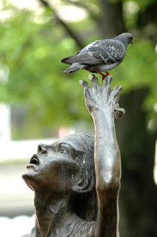 Free Pigeon And Statue Royalty Free Stock Photo - 800255