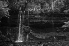 Free Waterfall - Russell Falls Royalty Free Stock Photos - 803718