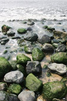 Free Moss On Rocks Royalty Free Stock Photos - 804838