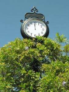 Clock Above The Leaves Royalty Free Stock Images
