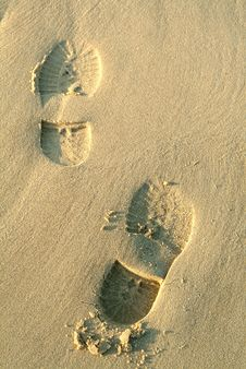 Free Footprints In Beach Stock Photography - 805612