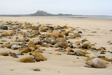 Free Sand, Pebbles And Holy Island Stock Image - 809721