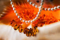 Free Costume Jewellery - Amber And Pearls. Royalty Free Stock Image - 8004626