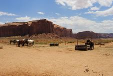 Free Horses In Monument Valley Royalty Free Stock Image - 8000666