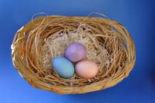 Free Easter Eggs Stock Photo - 8001420