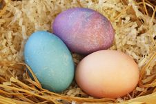 Free Easter Eggs Royalty Free Stock Image - 8001436
