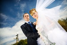 Free Bride With Flying Veil And Groom Stock Photo - 8001510