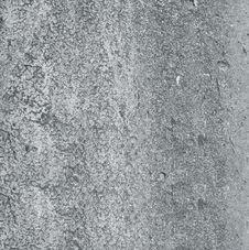 Free Gray Wall Stock Photo - 8001900