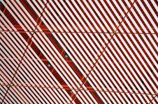 Free Line Pattern Royalty Free Stock Image - 8002726