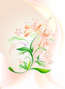 Free Pink-orange Flower-2 Royalty Free Stock Images - 8003729