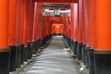 Free Red Shrine Gates Stock Image - 8003851