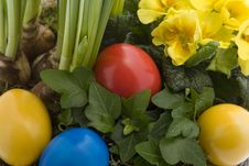 Free Easter Eggs With Spring Flowers Royalty Free Stock Photography - 8006577