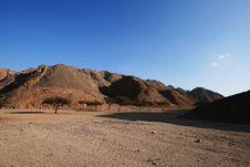 Free Wadi In The Desert Stock Image - 8008291