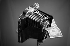 Free Camera  And Dollar Royalty Free Stock Images - 8009139