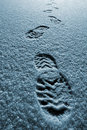 Free Tracks In The Snow Royalty Free Stock Images - 8016219