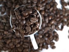 Free Mug Of Coffee Beans Royalty Free Stock Photo - 8011025