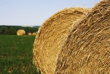 Free Hay Bale Stock Images - 8011984