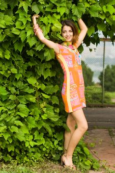 Attractive Girl Near The Bush Royalty Free Stock Photography