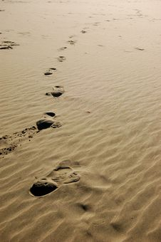 Free Beach Footsteps Royalty Free Stock Images - 8012859
