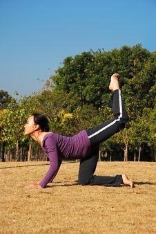 Free Yoga Royalty Free Stock Photography - 8013807
