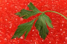 Red Caviar. Stock Photos