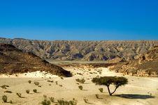 Free Dry Desert Stock Image - 8015621