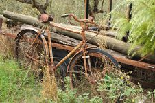 Free Forgotten Bicycle Stock Photos - 8016063