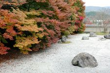Free Zen Garden With Maple Royalty Free Stock Images - 8019489