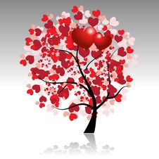 Free Valentine Tree Beautiful For Your Design Stock Image - 8020071