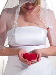 Free Beauty Bride Stock Photo - 8020650
