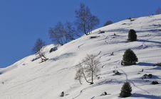 Free Snow And Sky Stock Image - 8021731