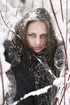 Free Snow Girl Royalty Free Stock Photo - 8023115