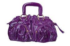 Free Bag Royalty Free Stock Image - 8023616