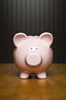 Free Portrait Of Your Savings Stock Photo - 8023820