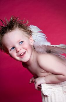 Free Angel Shine Stock Photos - 8024523
