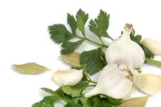 Garlic, Celery And Bay Leaf Royalty Free Stock Photo