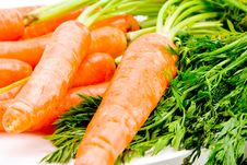 Free Bright And Fresh Organic Carrots Stock Photography - 8026312