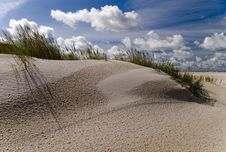 Free Dunes On The Beach Royalty Free Stock Images - 8026859
