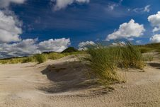 Free Sand Dunes On The Beach Royalty Free Stock Photo - 8026895