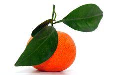 Free Chinese Orange Royalty Free Stock Images - 8028069