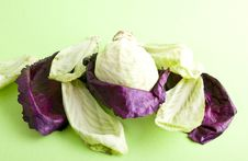 Free Cabbage Royalty Free Stock Photos - 8029778
