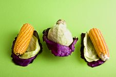 Corn And Cabbage Royalty Free Stock Photography