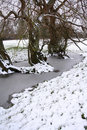 Free Frozen Stream Royalty Free Stock Photography - 8032027