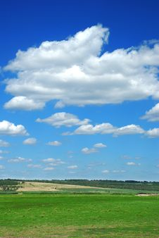 Free Green Field And Blue Sky Stock Image - 8030661