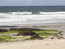 Free Wild Beach Stock Photography - 8030942