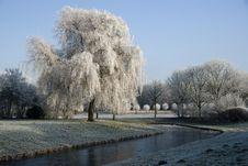 Free European Winter Royalty Free Stock Photo - 8031155