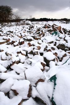 Free Snowy Log Pile Royalty Free Stock Photo - 8032335