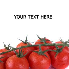 Free Tomatoes Over White Stock Image - 8032871