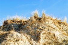 Free Sand Dunes Stock Photography - 8033182