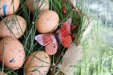 Free Easter Eggs Stock Images - 8033554